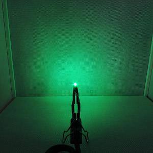 Dioda LED zielony szmaragd SMD 0805 - zdjęcie nr 3